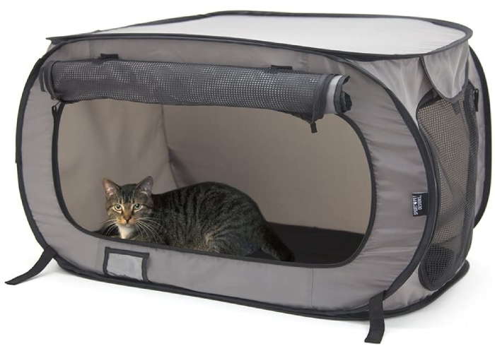 cat sitting sitting inside an open soft rounded gray cat kennel