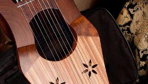 The Best Handheld Harps for Making Lovely Music