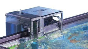 The Top Filters for Your Home Aquarium