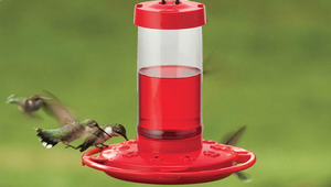 Bring More Hummingbirds to Your Yard with These Feeders
