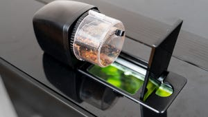 The Best Automatic Feeders for Your Fish Tank
