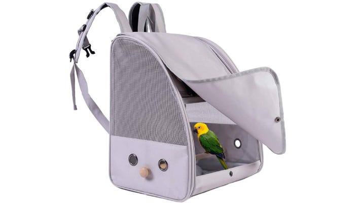 Colorful bird perched inside open, gray backpack carrier