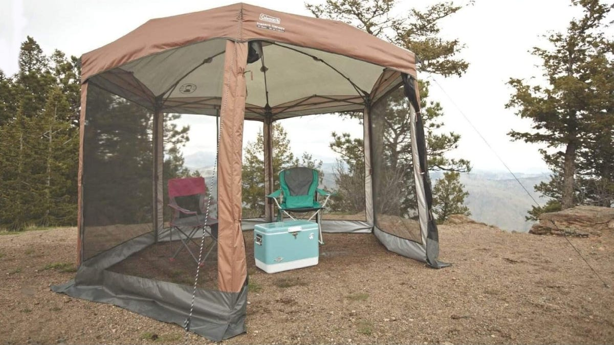 A brown and black canopy with mesh walls sitting in a wooded camp ground.