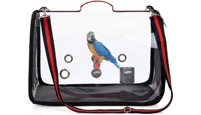 Parrot perched inside transparent bird carrier