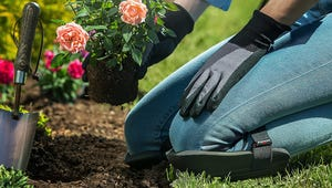 The Best Knee Pads for Gardening