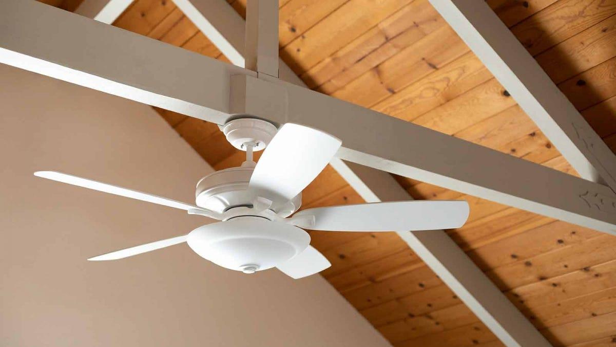 Ceiling Fan Direction Each Season