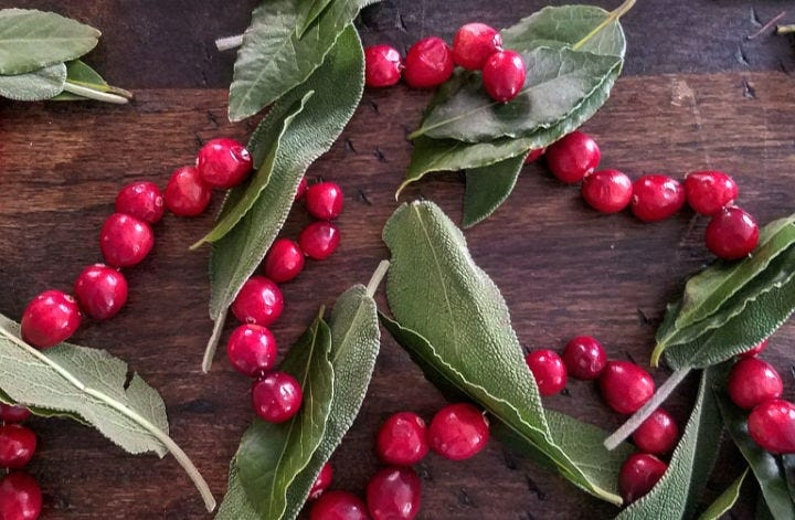 Hand-crafted cranberry, sage and bay leaf garland.