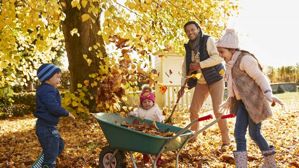 A father and three kids raking and playing in fall leaves.