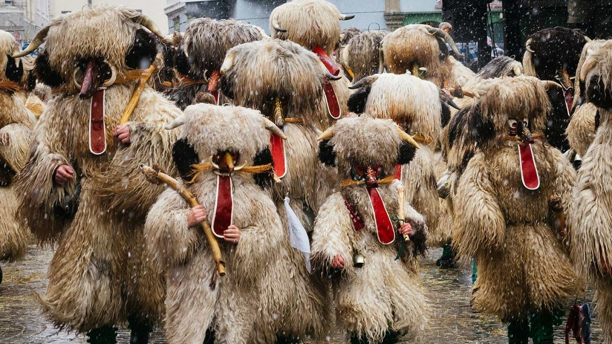 People dressed as benevolent demons, marching in a Kurentovanje parade in Slovenia.