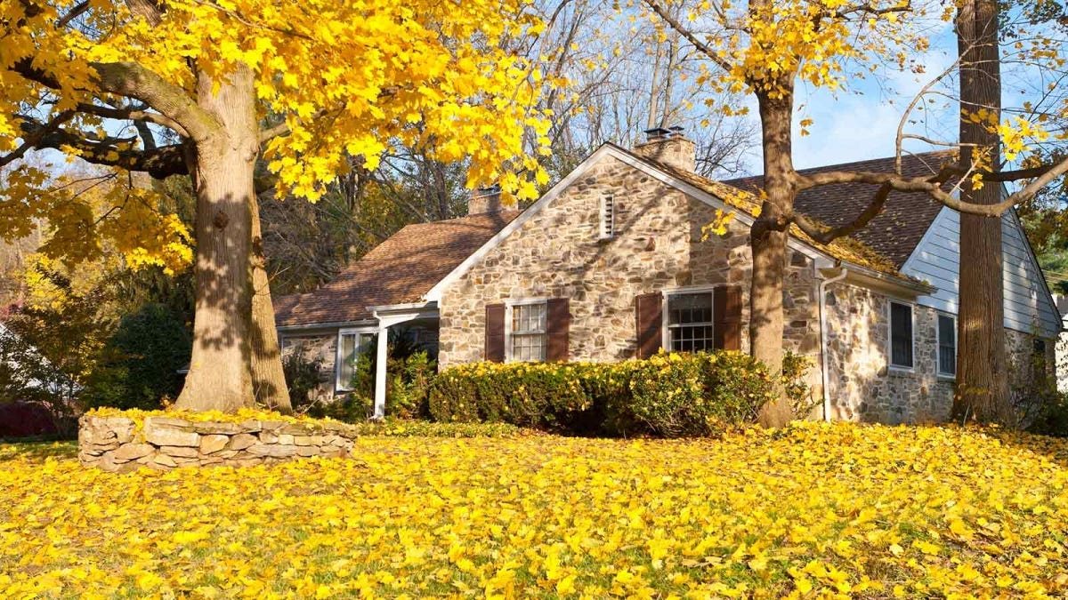 brightly colored leaves blanketing the yard of an old stone home
