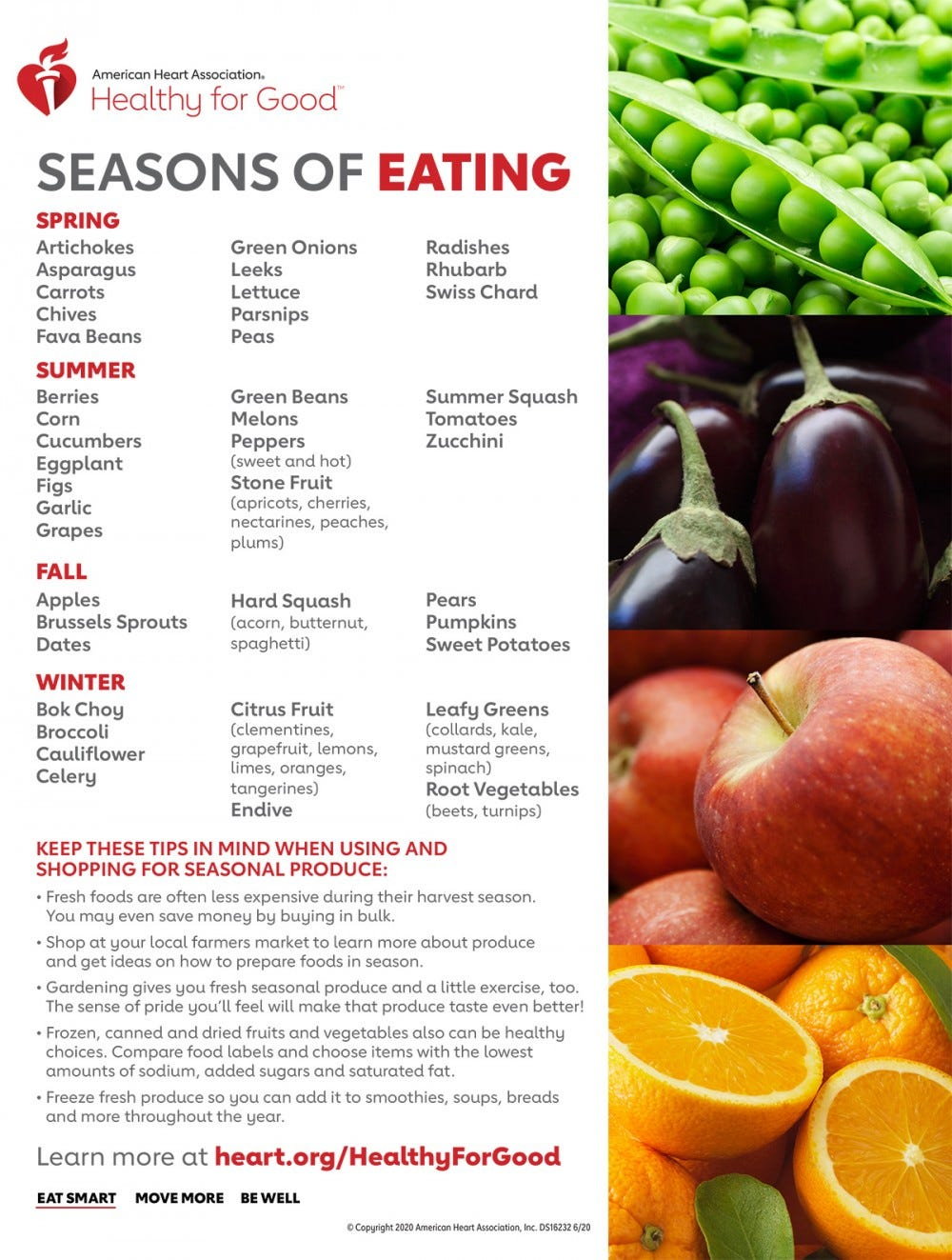 Infographic with fruits and vegetables listed by the season and a few tips for shopping for seasonal produce