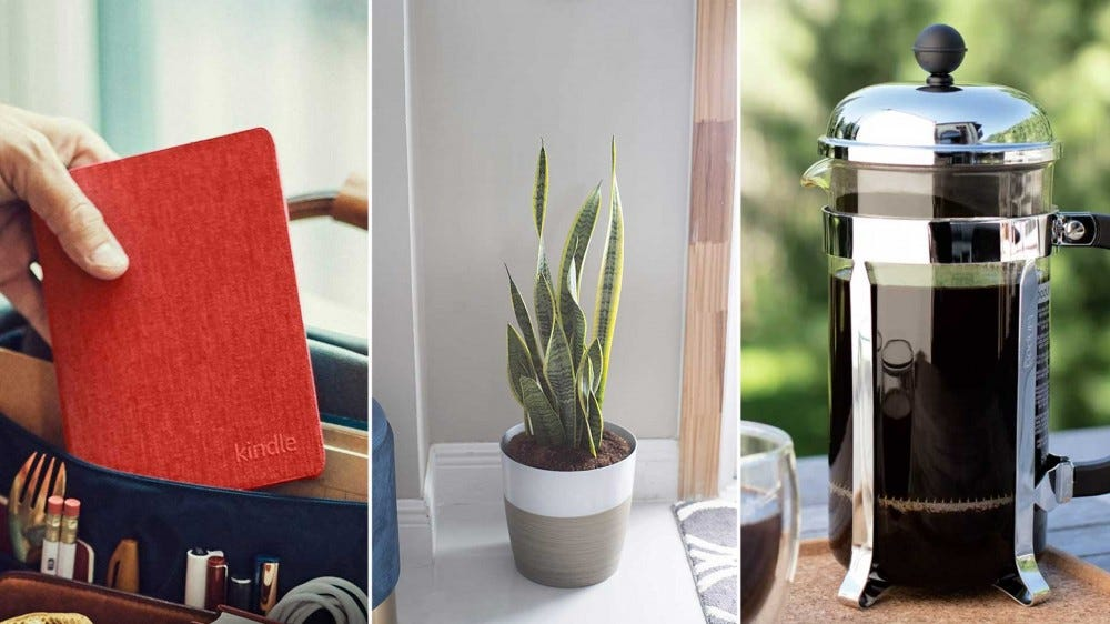 Left to right: a Kindle ebook reader with a red cover, a snake plant, and a French press coffee maker.