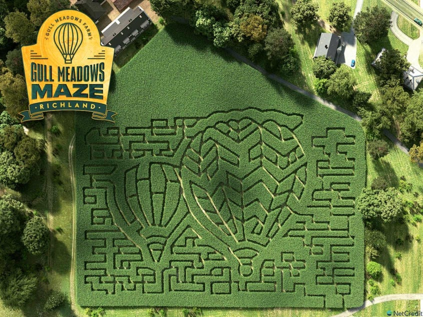 An overhead photo of a corn maze shows all the potential paths in a hot air balloon shape.