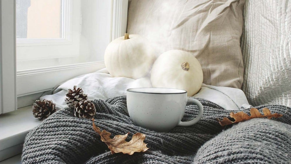 A sunny window seat with a throw blanket, pillows, pumpkins, and a mug of hot chocolate.