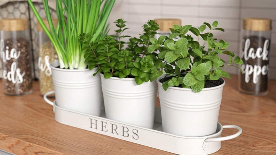 An herb planter from Barnyard Designs, placed directly on the counter with full of blooming fresh herbs.