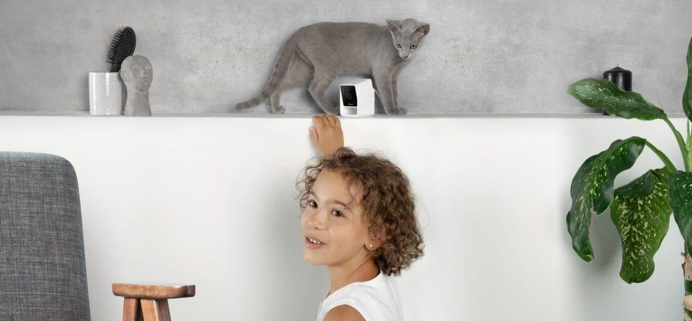 A little girl standing next to a gray cat on a shelf behind a pet camera.