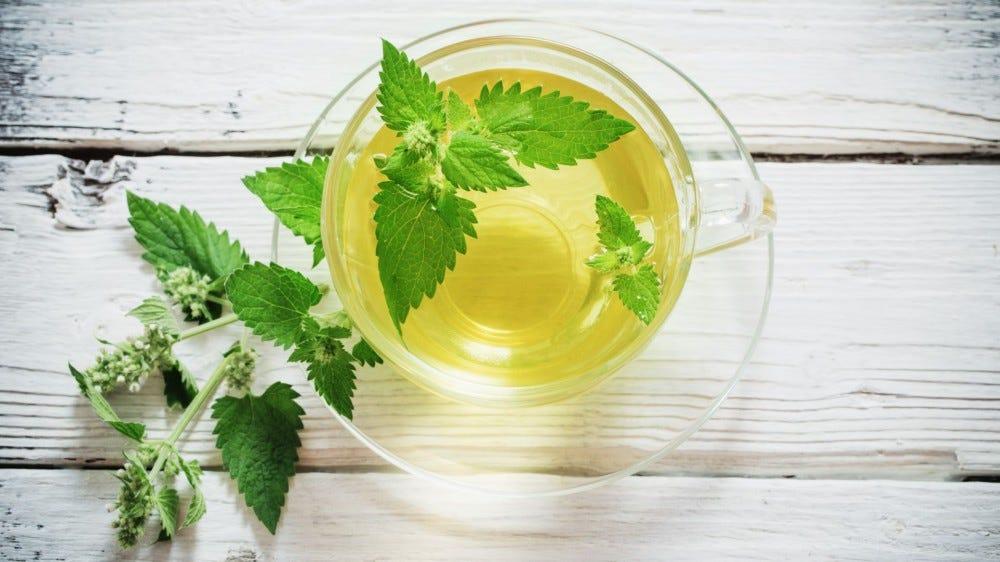 A glass mug of lemon balm tea surrounded by lemon balm leaves.