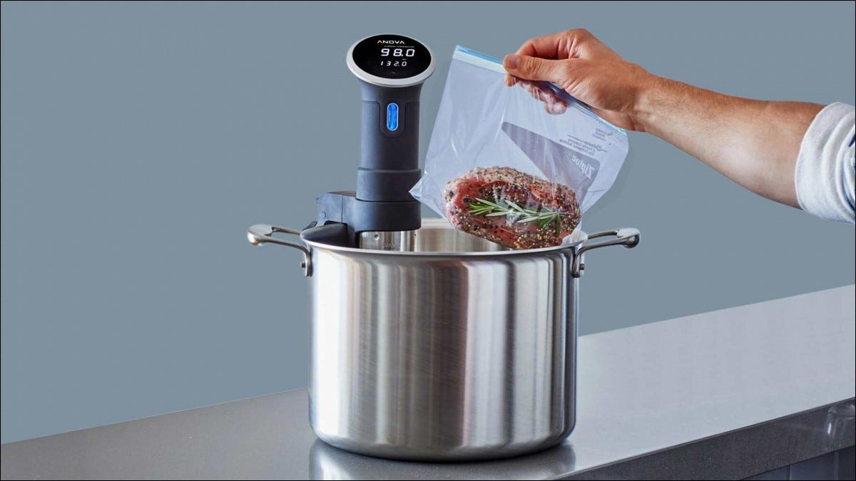 A cut of meat being lowered into an Anova sous vide cooker