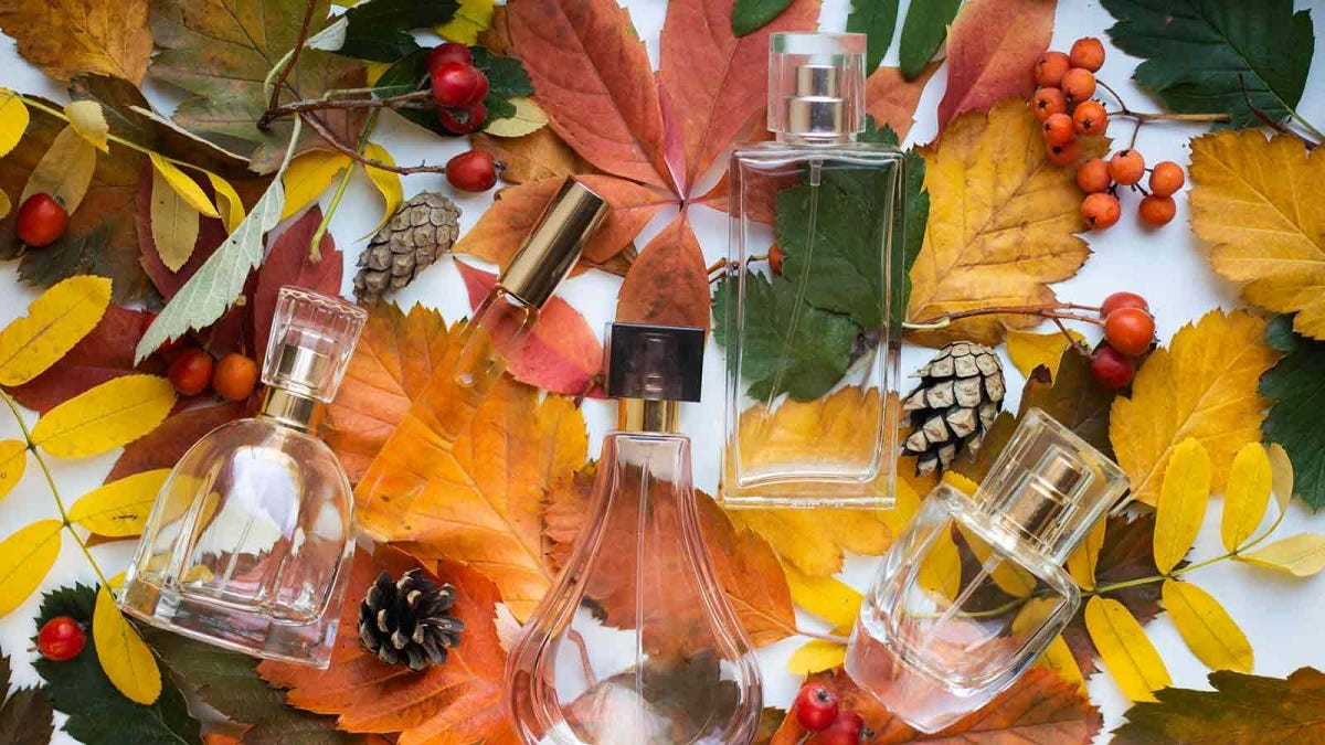 Five empty perfume bottles of varying size lying on a bed of leaves, pine cones, and sprigs of berries.