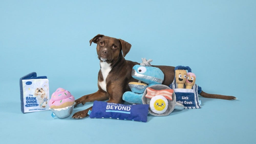 A brown dog surrounded by BARK dog toys from Bed, Bath, and Beyond.