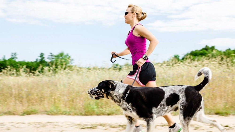 A woman trail running with her dog.