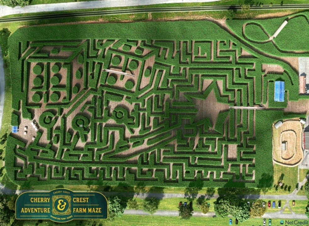 An intricate corn maze is shown from an aerial view.