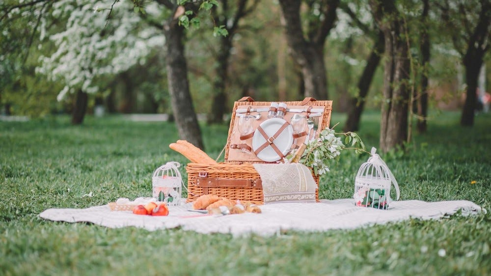 A cozy picnic on a blanket on the grass.