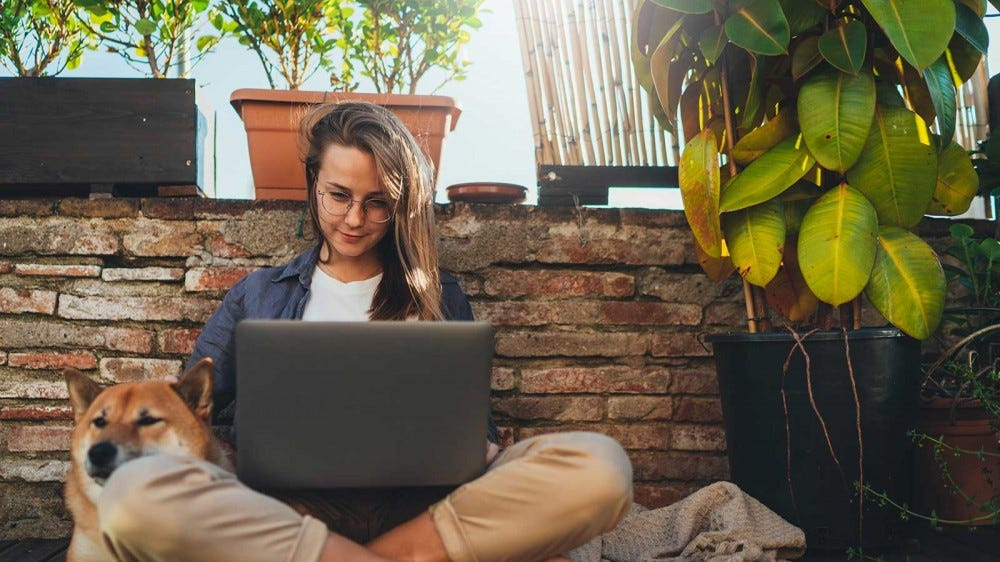 A young woman sitting on a terrace surrounded by plants, working on her laptop.