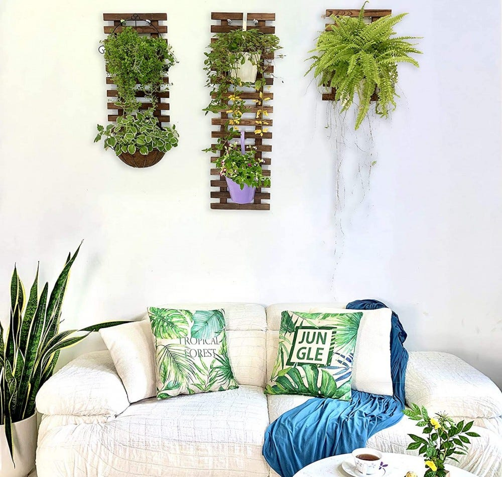 Three vertical wood lattice pieces holding plants on a wall above a white sofa