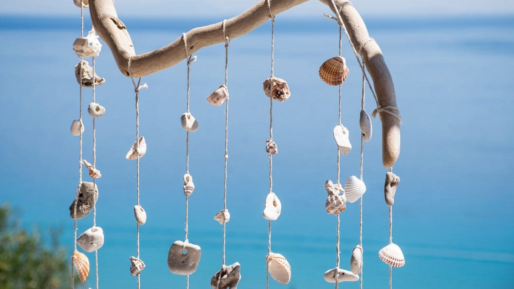 A shell wind chime hanging near the ocean.