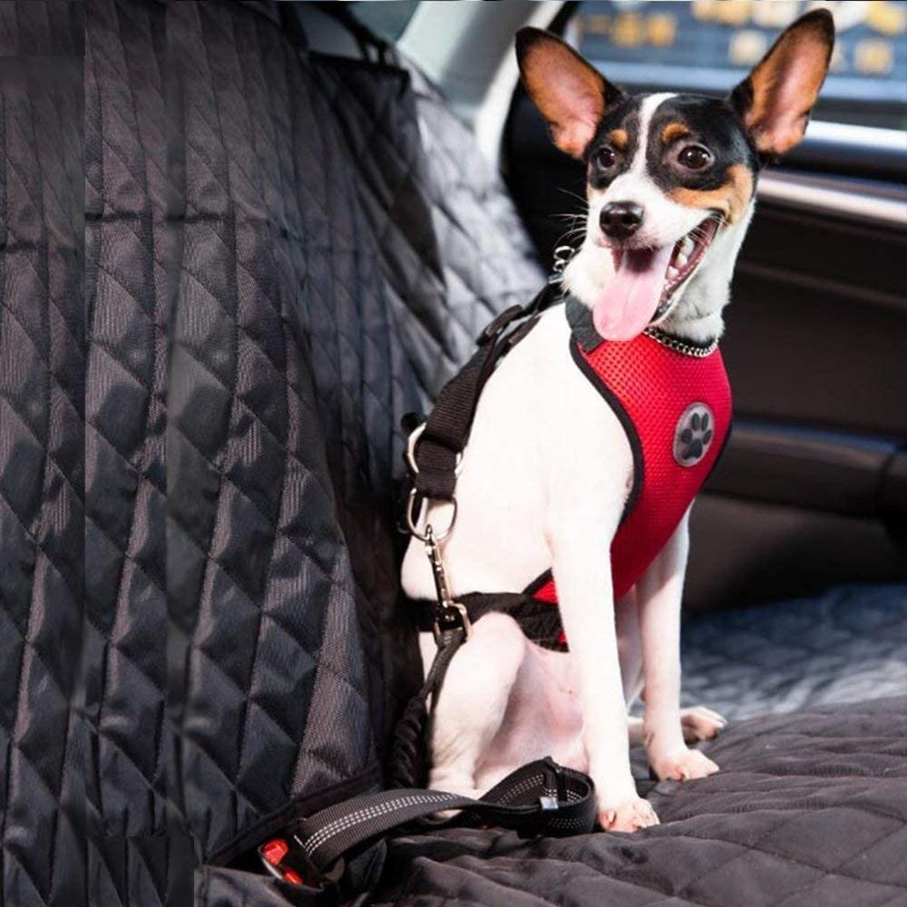 A dog in the SlowTon Dog Car Seat Belt and Harness.