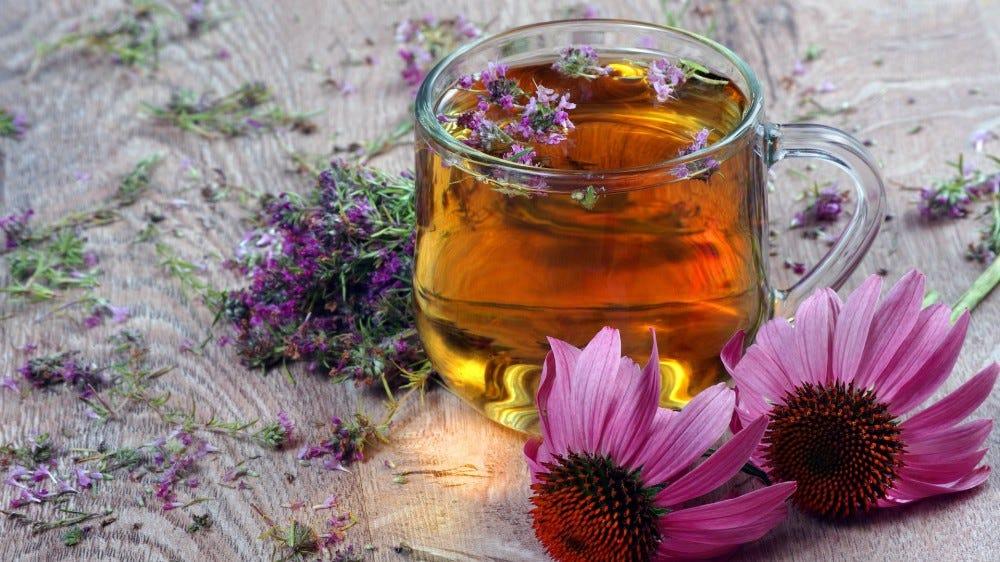 A glass mug of tea next to two echinacea flowers.