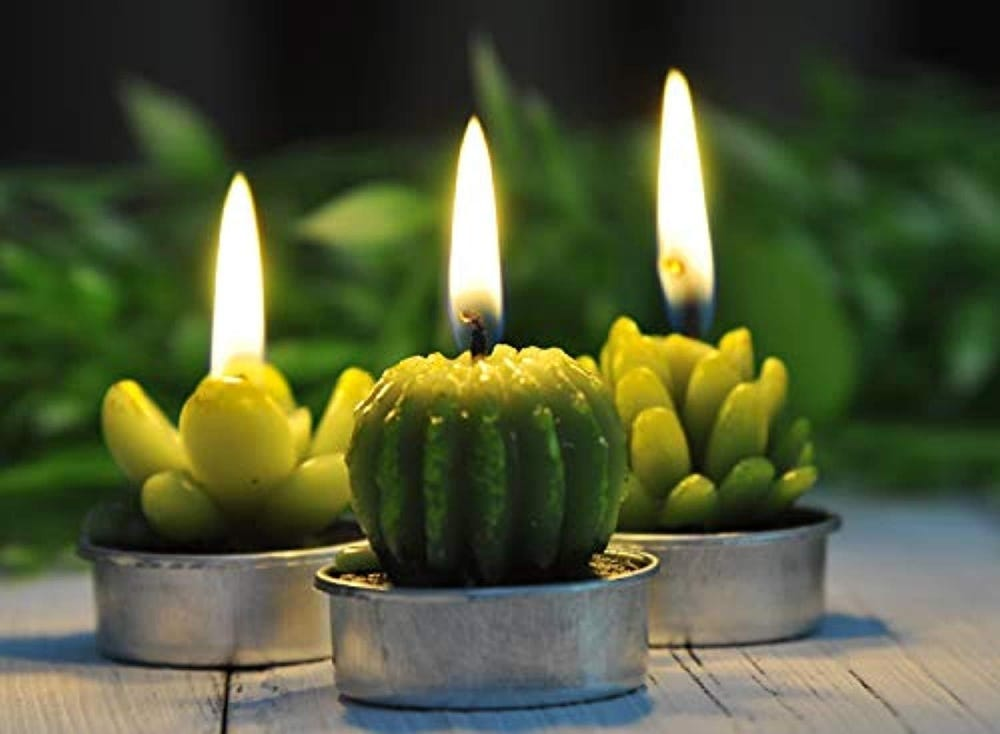 Three succulent candles burning on a table.