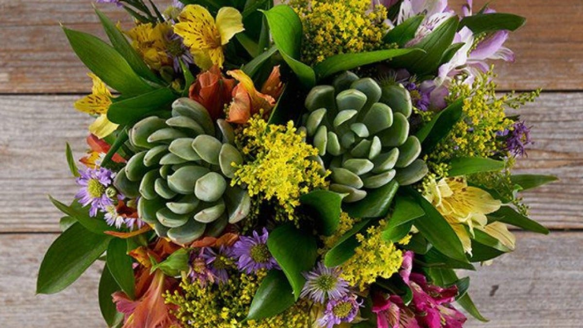A sample of the plants and flowers from the Bouqs box.