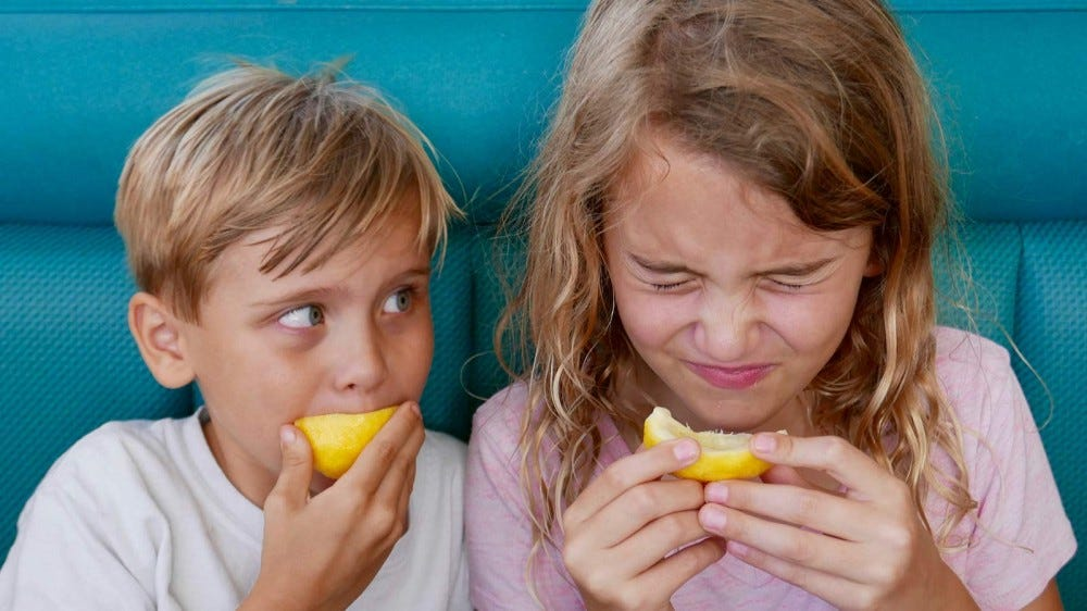 Two children making faces while biting into sour lemons.