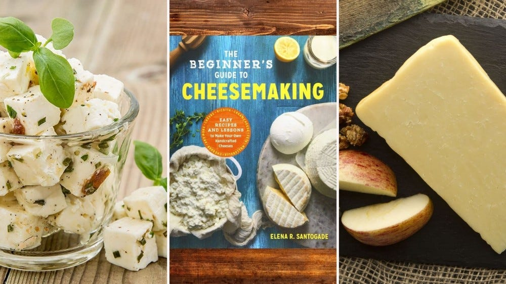 Various cheeses and a cheese dairy book.