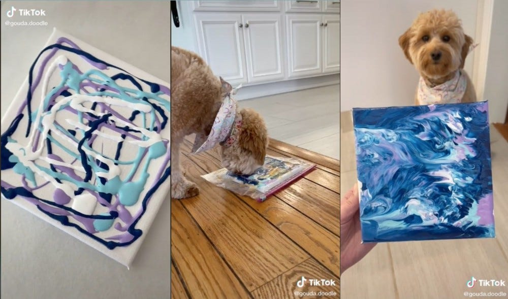 Three images show a paint-covered canvas, a dog licking it through a plastic bag, and the final result.