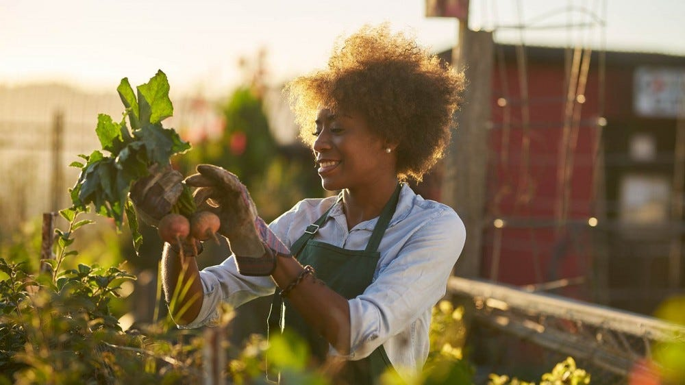 a woman examines her plants as the sun sets.