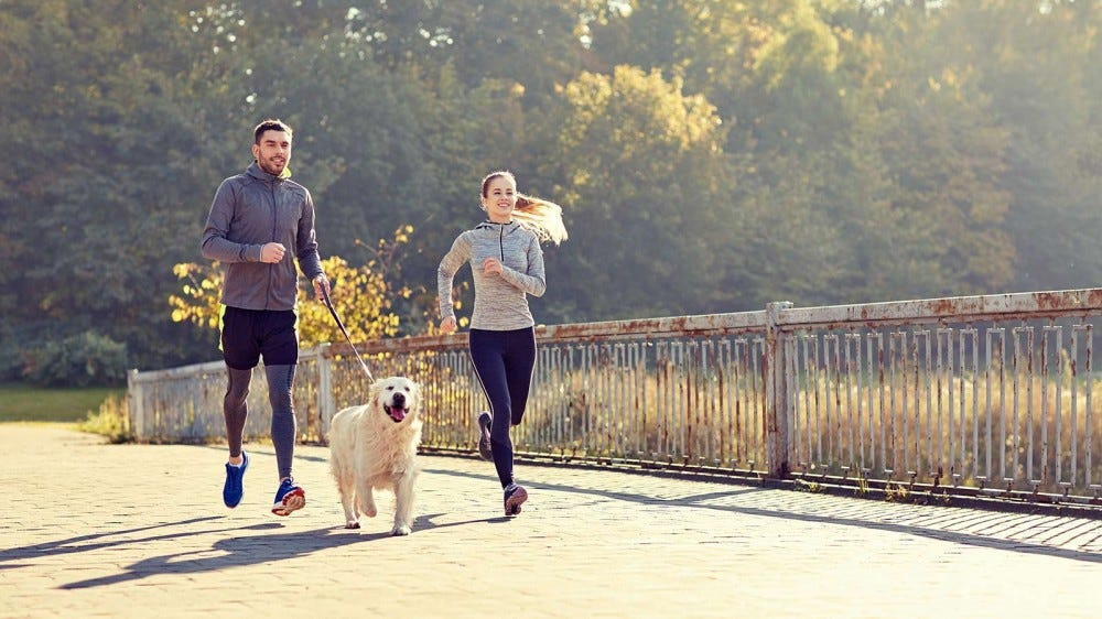 A couple running over a flagstone bridge with a happy dog beside them.